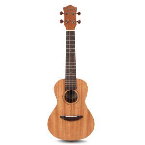 Official Kala Learn to Play Ukulele Starter Kit