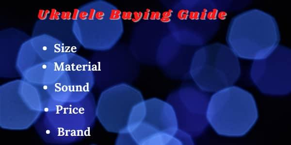 Ukulele Buying Guide for beginners