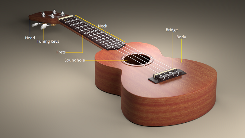 ukulele body structure
