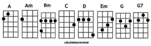 I Will Chords of Ukulele