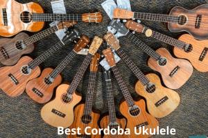 Best Cordoba Ukuleles