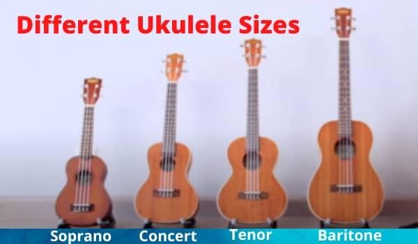 Different Ukulele Sizes