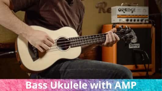 Bass Ukulele with AMP