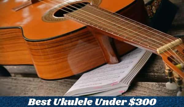 Best Ukulele Under $300