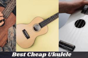 Best Cheap Uke