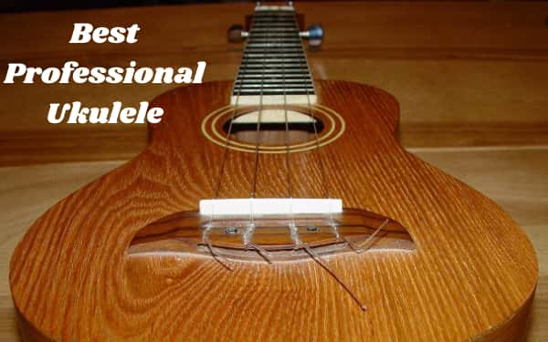 Best Professional Ukulele