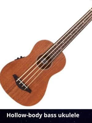 SHollow-body bass ukulele