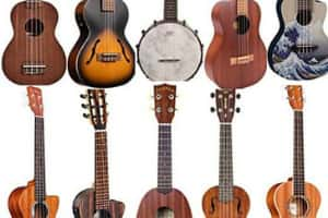 Different types of ukes